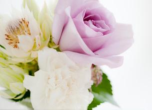 バラとカーネーションのフラワーアレンジメントの写真素材 [FYI01480458]