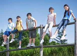 青空のもと木の柵に腰掛ける5人の小学生の写真素材 [FYI01480483]