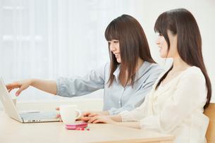 ノートパソコンを操作する2人の20代女性の写真素材 [FYI01480488]