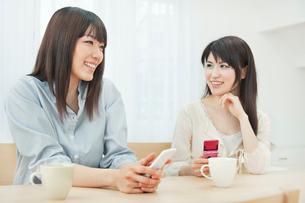 携帯電話を持ち会話を楽しむ2人の20代女性の写真素材 [FYI01480613]