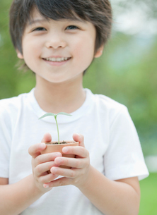 双葉を持つ笑顔の男の子の写真素材 [FYI01480643]
