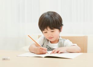勉強する男の子の写真素材 [FYI01480836]