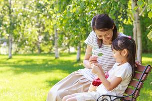 新緑の中、ベンチに座る仲の良い母子の写真素材 [FYI01480901]