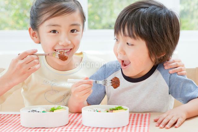 お弁当を食べる女の子と男の子の姉弟の写真素材 [FYI01480916]