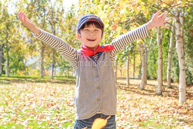 紅葉の中の6歳の男の子の写真素材 [FYI01480931]