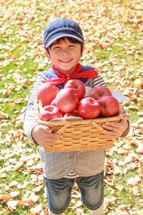 紅葉の中、リンゴを持つ6歳の男の子の写真素材 [FYI01481003]