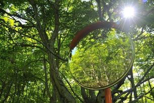 新緑とカーブミラー 奥大山の写真素材 [FYI01481032]