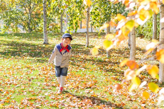 紅葉の中の6歳の男の子の写真素材 [FYI01481163]