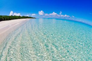 エメラルドグリーンの海の写真素材 [FYI01481284]