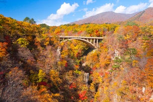 紅葉する鳴子峡の山並みと大深沢橋の写真素材 [FYI01481718]
