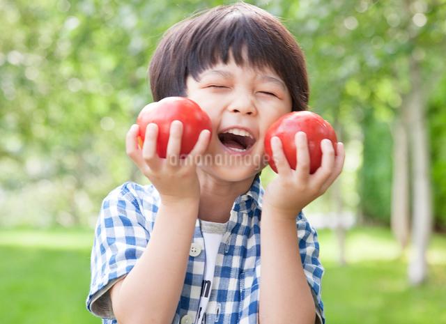 緑の中、採れたてのトマトを持つ男の子の写真素材 [FYI01481873]