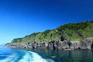 知床半島の断崖の写真素材 [FYI01482263]