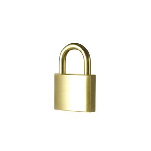 白い背景に置かれた金色の施錠の写真素材 [FYI01484624]