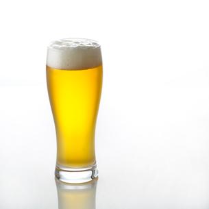 白い背景とビールの写真素材 [FYI01484845]