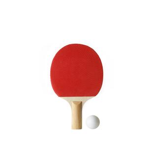 卓球のラケットとボールの写真素材 [FYI01484846]