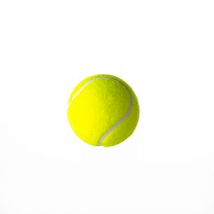 白背景の中のテニスボールの写真素材 [FYI01484867]