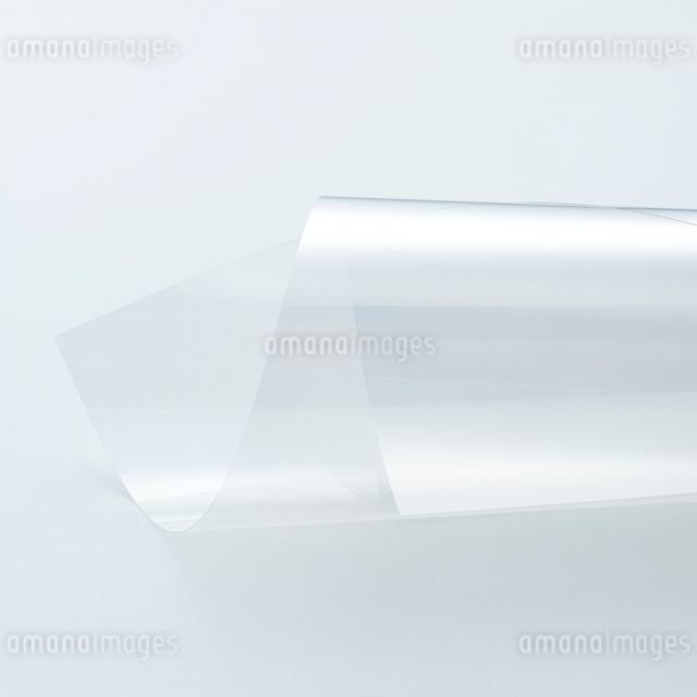 白い背景のフイルムの表情の写真素材 [FYI01485080]