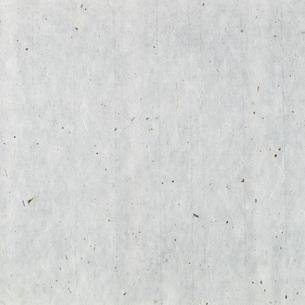 白い和紙の背景の写真素材 [FYI01485215]