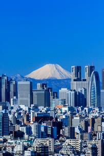 文京シビックセンターから望む新宿ビル群と富士山の写真素材 [FYI01485355]