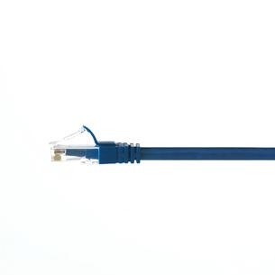 白い背景のLANケーブルの写真素材 [FYI01485808]