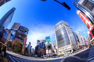 渋谷駅 ハチ公口 スクランブル交差点の写真素材 [FYI01486010]