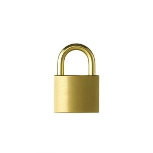 白い背景に置かれた金色の施錠の写真素材 [FYI01486026]
