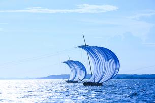 霞ヶ浦帆引き船の写真素材 [FYI01486252]