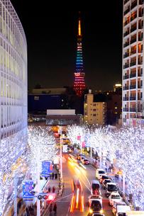 やき坂通りのクリスマスイルミネーションと東京タワーの写真素材 [FYI01486496]