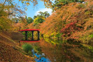 弘前公園の紅葉の写真素材 [FYI01486600]