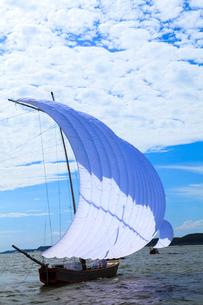 霞ヶ浦帆引き船の写真素材 [FYI01486845]