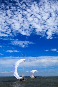 霞ヶ浦帆引き船の写真素材 [FYI01486924]