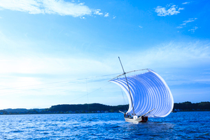 霞ヶ浦帆引き船の写真素材 [FYI01487154]