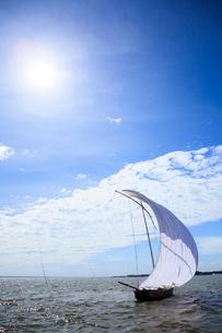 霞ヶ浦帆引き船と太陽の写真素材 [FYI01487585]
