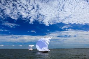 霞ヶ浦帆引き船の写真素材 [FYI01487682]