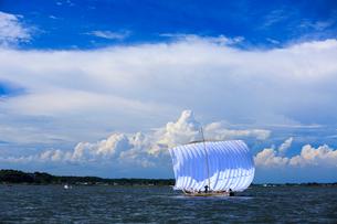 霞ヶ浦帆引き船の写真素材 [FYI01487863]