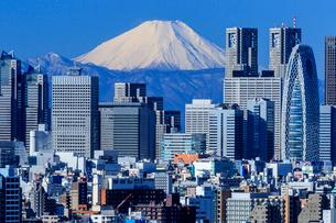 文京シビックセンターから望む新宿ビル群と富士山の写真素材 [FYI01487905]
