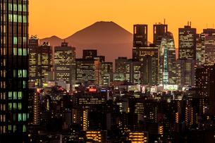文京シビックセンターから望む新宿ビル群と富士山の夕景の写真素材 [FYI01487914]