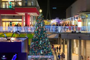 パレットタウンのクリスマスツリーとイルミネーションの写真素材 [FYI01488000]
