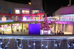 パレットタウンのクリスマスツリーとギフトボックスのオブジェの写真素材 [FYI01488008]