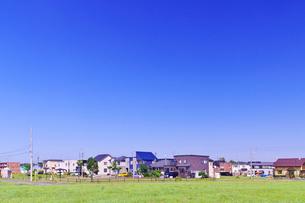 緑の草原と新興住宅地の家並みの写真素材 [FYI01489386]