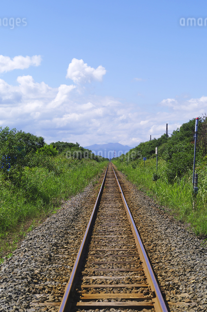 真っ直ぐな単線の鉄道線路の写真素材 [FYI01489804]