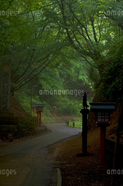 高尾山の山道の写真素材 [FYI01489845]
