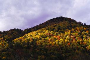 秋の山岳風景の写真素材 [FYI01490012]