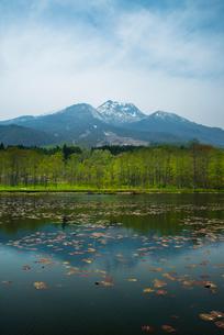 いもり池と妙高山の写真素材 [FYI01490243]