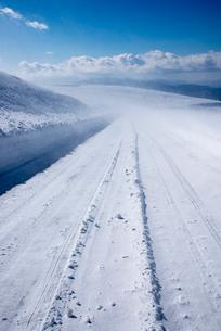 地吹雪の霧ヶ峰ビーナスラインの写真素材 [FYI01491436]