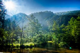 上高地朝の田代池の写真素材 [FYI01491597]