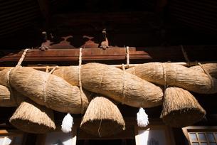 諏訪大社下社秋宮神楽殿のしめ縄の写真素材 [FYI01492219]