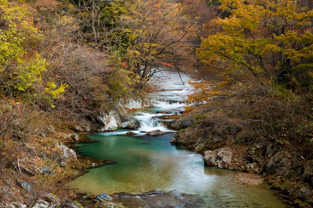 清流と紅葉の男鹿川の写真素材 [FYI01492673]