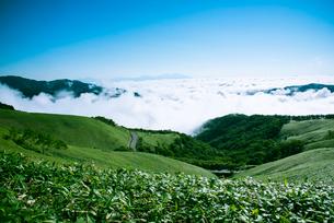 三峰山より雲海に浮かぶ浅間山の写真素材 [FYI01492826]