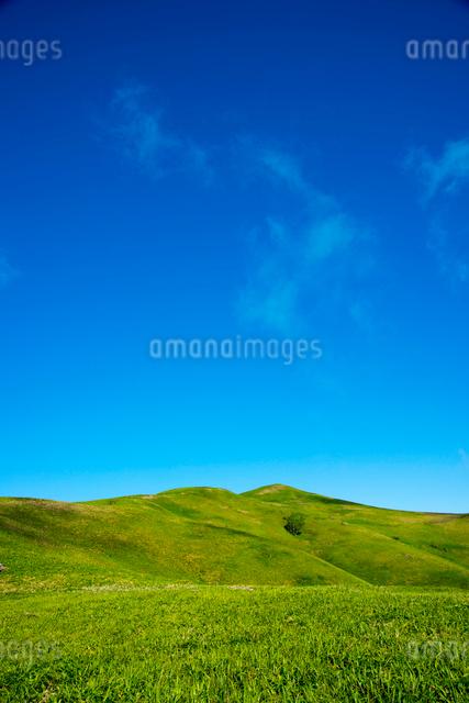 三峰山の写真素材 [FYI01492908]